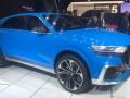 2018 Audi Q8 2
