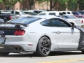 2018 Mustang GT500 spy photos8